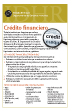 Spanish Financial Credit