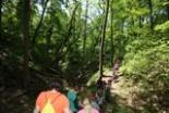 School group on guided hike at Pere Marquette State Park