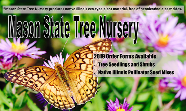 Mason State Tree Nursery-Order Forms Available