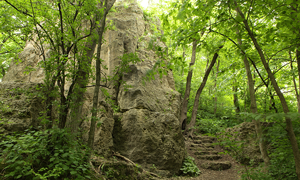 Park of the Month is Mississippi Palisades