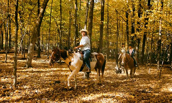 Equestrian Trail