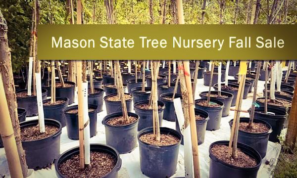 Mason State Tree Nursery Fall Sale