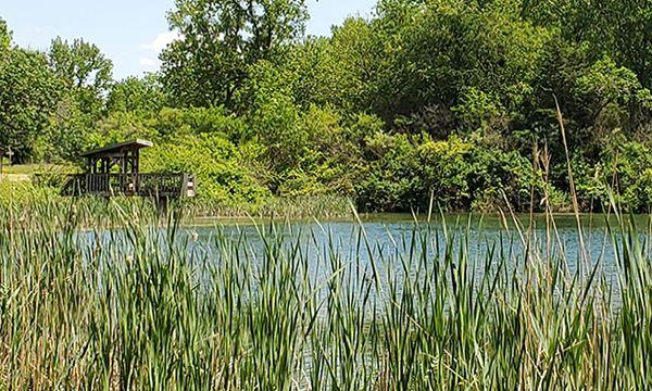 Osprey Lake Mautino