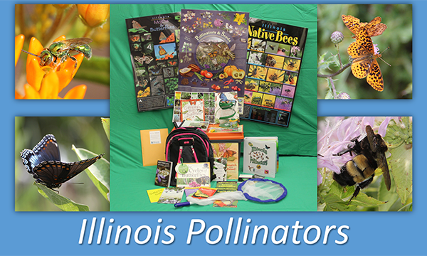 Illinois Pollinators Resources Trunks for Loan