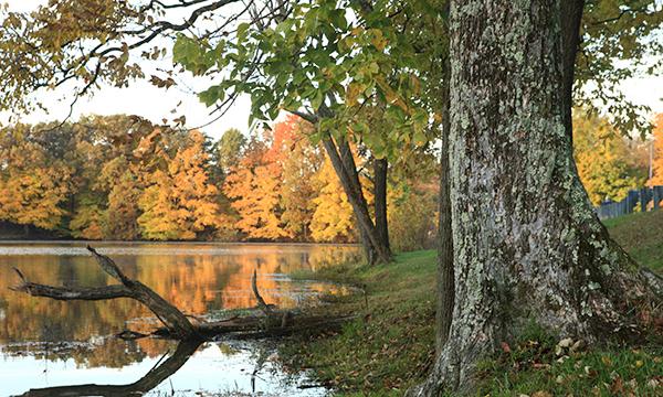 Red Hills Lake
