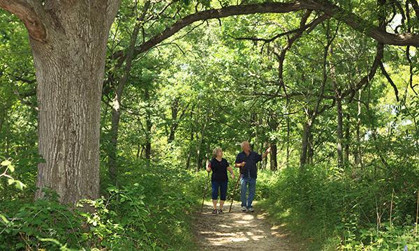 Arrowhead Trail
