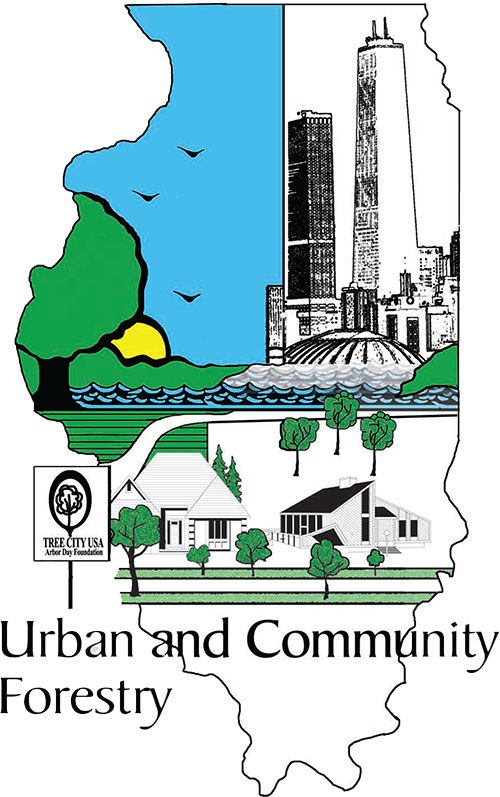 types of community forestry