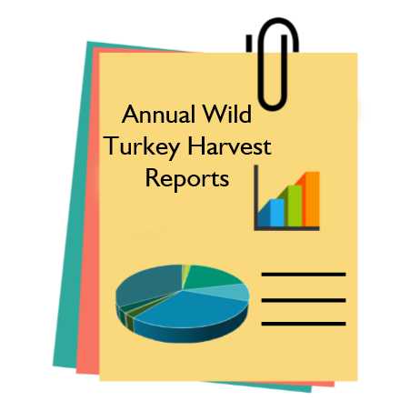turkey reports image.png