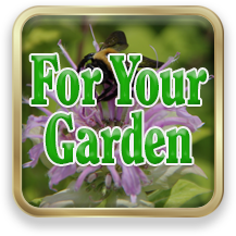 Link to For Your Garden