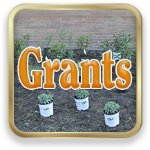 Link to Grants