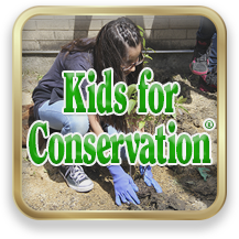 Link to Kids For Conservation