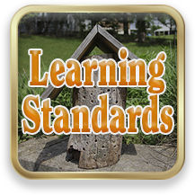 Link to Learning Standards
