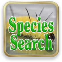 Link to Species Search