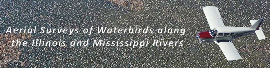 Aerial Surveys of Waterbirds