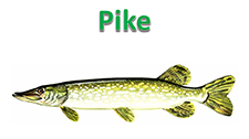 June2016Pike.PNG