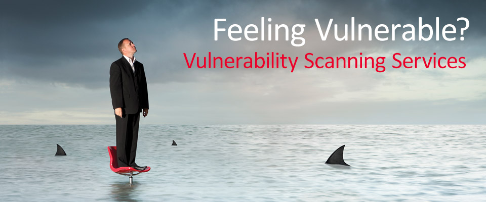 Vulnerability Scanning Services
