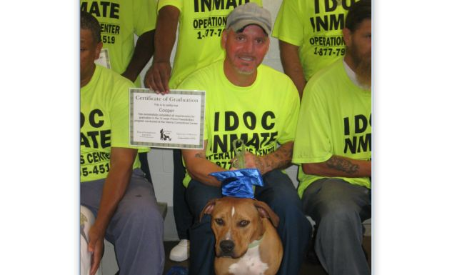 Shelter dogs graduate from obedience training
