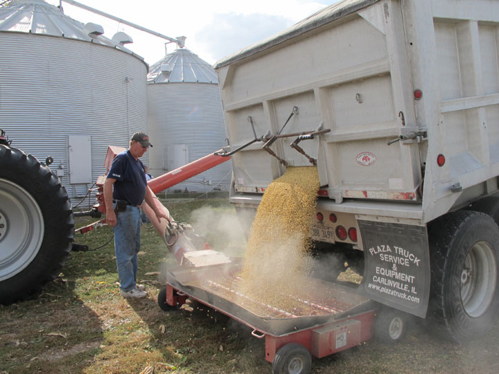 Grain Tour Picture Unloading A Truck Of Soybean.