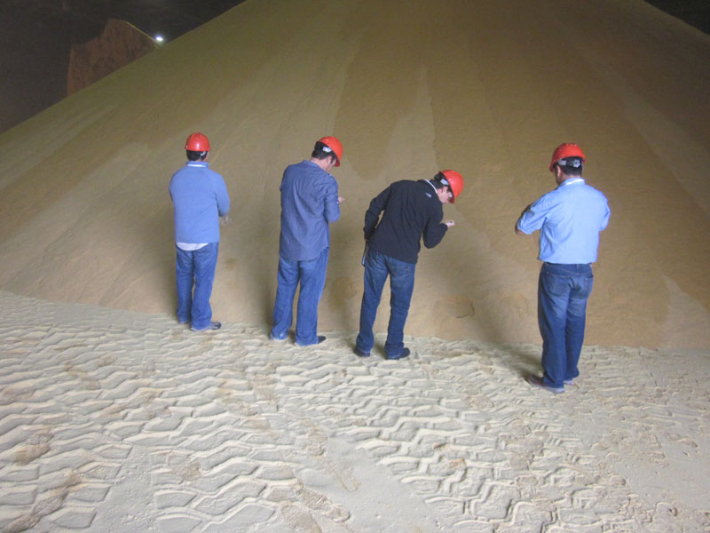 Grain Tour Picture Inspecting DDGs.
