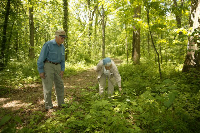 Bluebird volunteers on a trail in Lowden Miller State Forest.