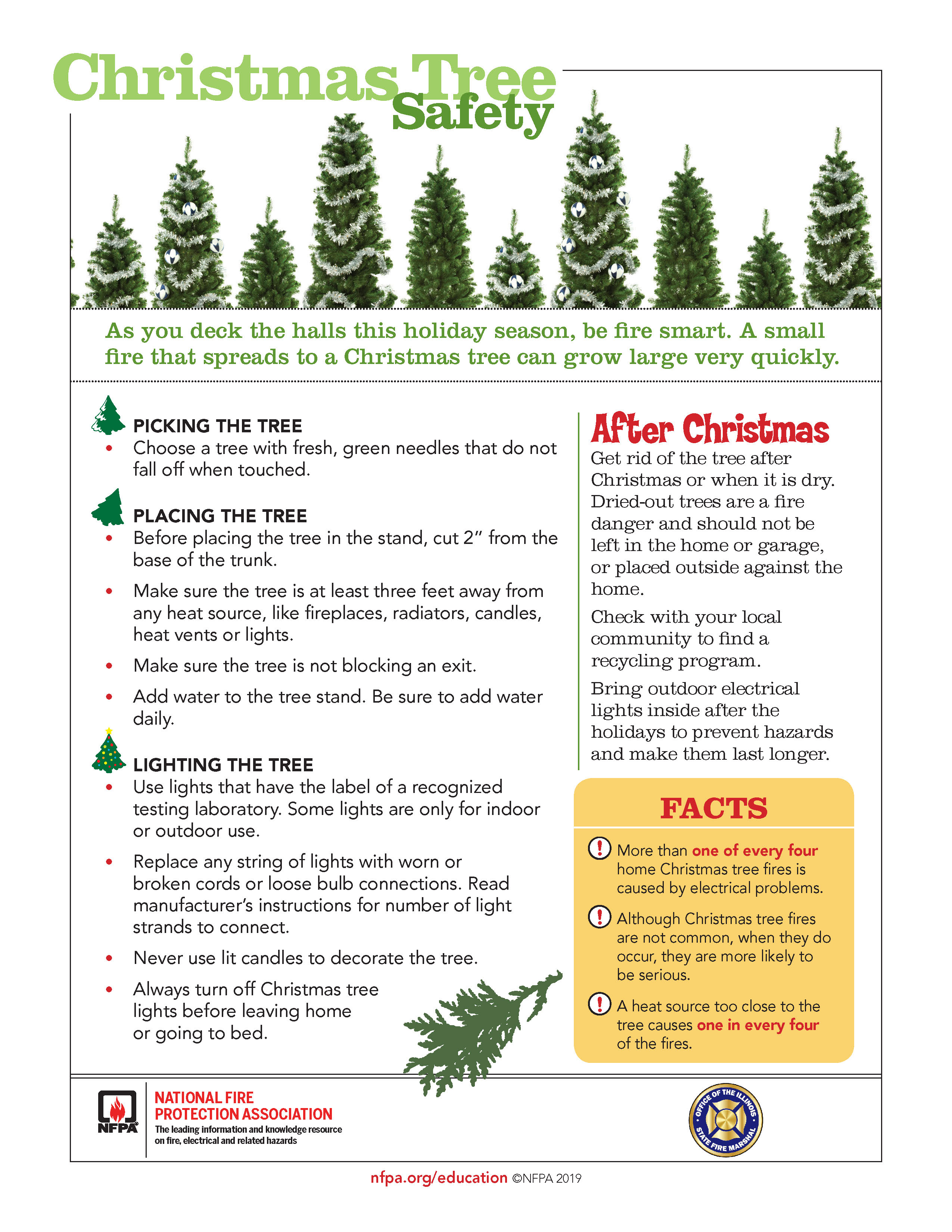 Christmas Tree Collection Springfield Illinois 2020 Christmas Tree Safety